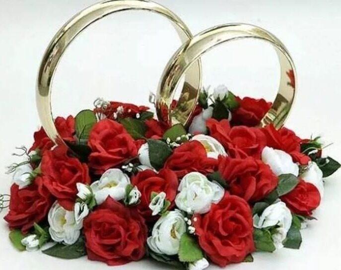кольца 111